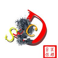 中国DCS车队